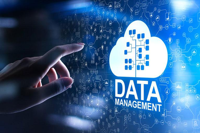 Recrutement Big Data Management